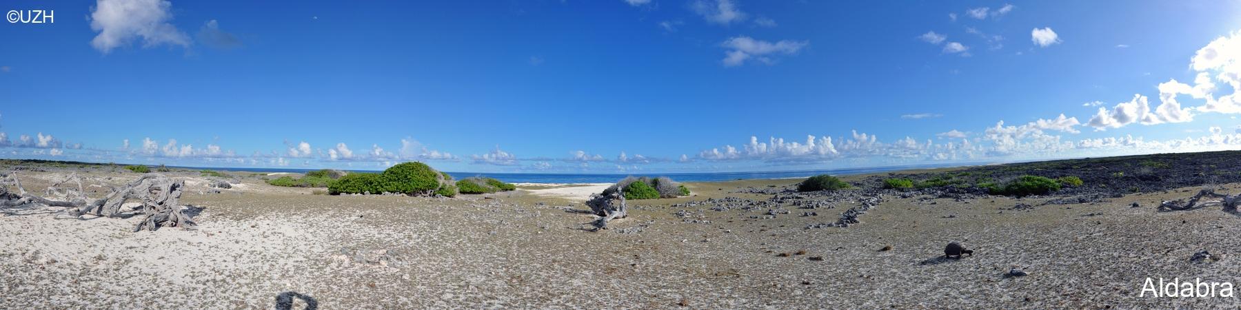 Aldabra3