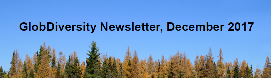 Our first newsletter has been issued !