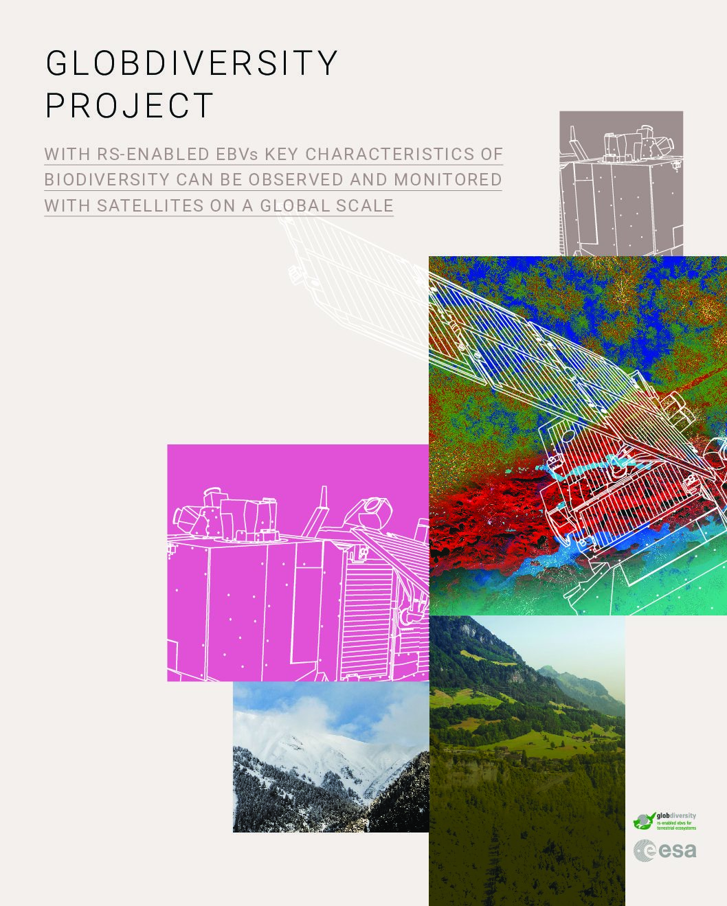 Project brochure launch