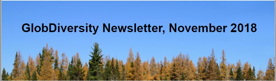 Our third newsletter has been issued!